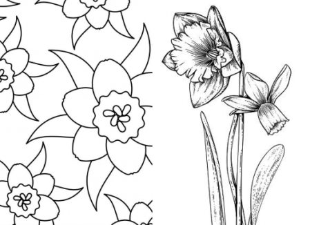 Kleurplaten Mandala Lente.Narcis Kleurplaat En Mandala En Narcissus Yurls Nieuws En Tips